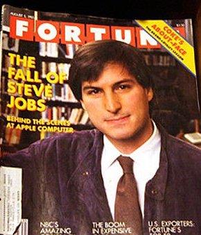 Fall of Steve Jobs